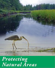 Protecting Natural Areas
