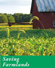 Saving Farmlands